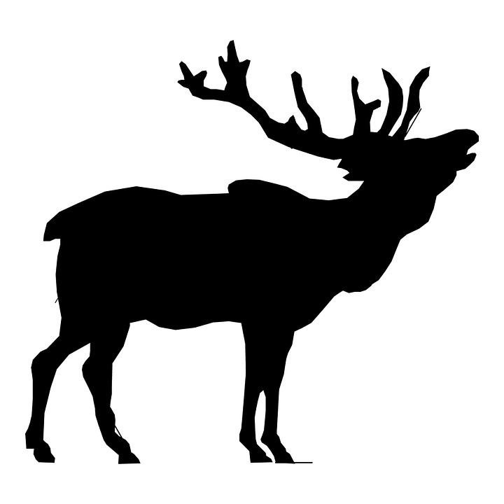 Free illustration: Elk, Stag, Head, Deer, Clip, Art.