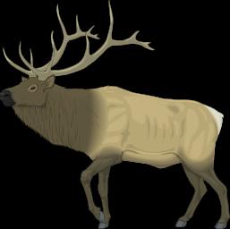Elk Clip Art.