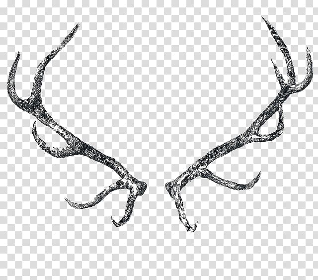 Reindeer Elk Antler Horn, Antler transparent background PNG.