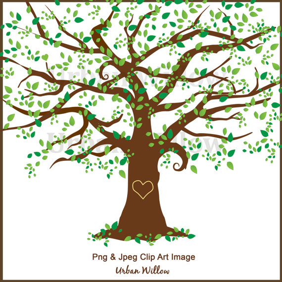 Clipart Tree Clipart Elm Tree Graphics White Oak Maple Tree by.