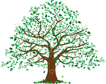 Family Tree 12 Inch Natural Tree Clip Art Large by UrbanWillow.