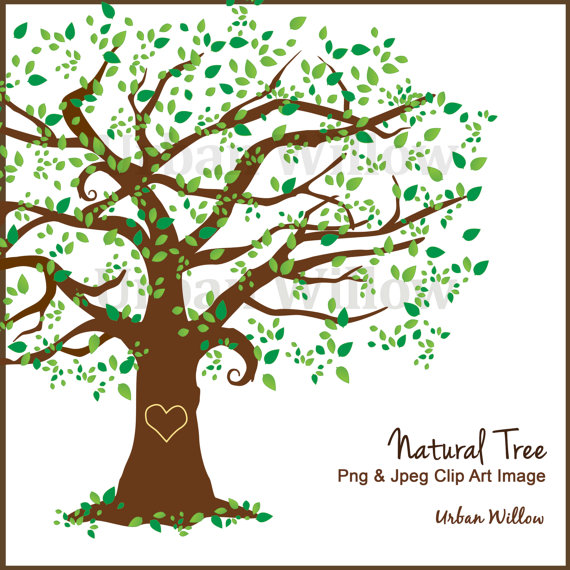 Family Tree Clipart Clipart Beautiful Tree Clipart by UrbanWillow.