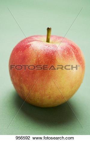 Stock Photo of Elstar apple 956592.