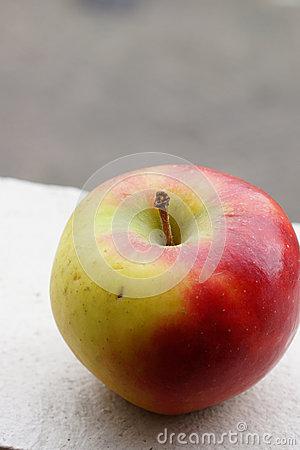 Elstar Apple Stock Image.