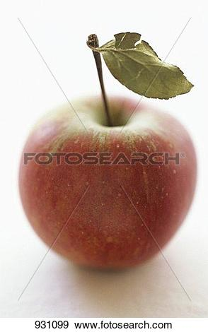 Stock Photograph of Elstar apple with leaf 931099.