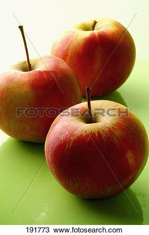 Stock Photo of Elstar apples 191773.