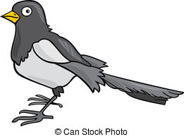 Clip Art Vector of Magpie on a white background, vector.