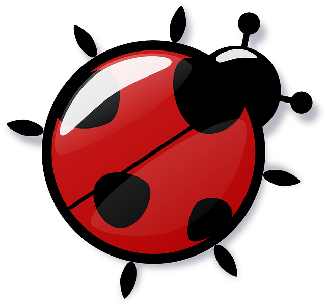 Free photo Coccinellidae Elytron Ladybug Beetle.