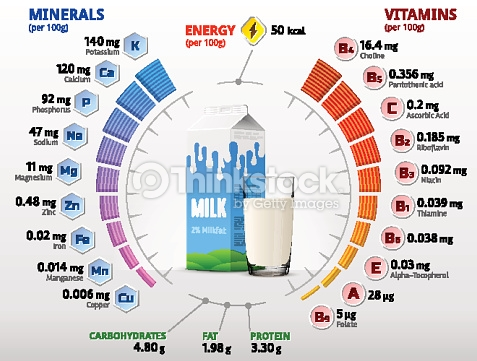 Vitamins And Minerals Of Cow Milk Vector Art.