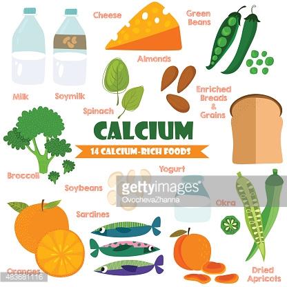 Vitamins And Minerals Foods Illustrator Set 15vector Set Of 14.