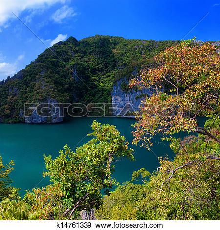 Stock Photograph of Emerald lake Thale Nai, Koh Mae island.