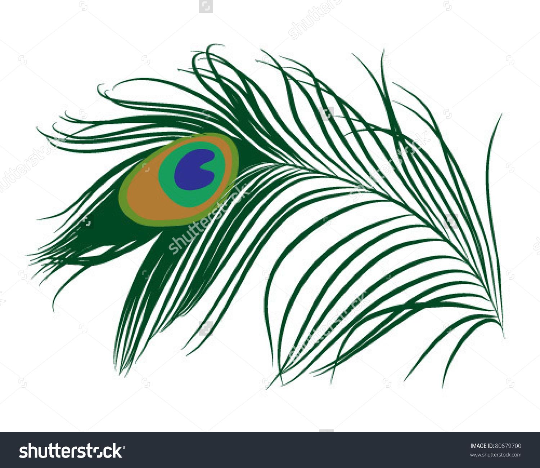 Emerald Green Peacock Feather Stock Vector 80679700.