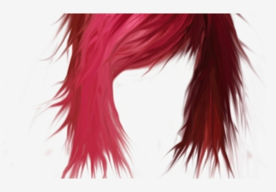 ladies hair png.