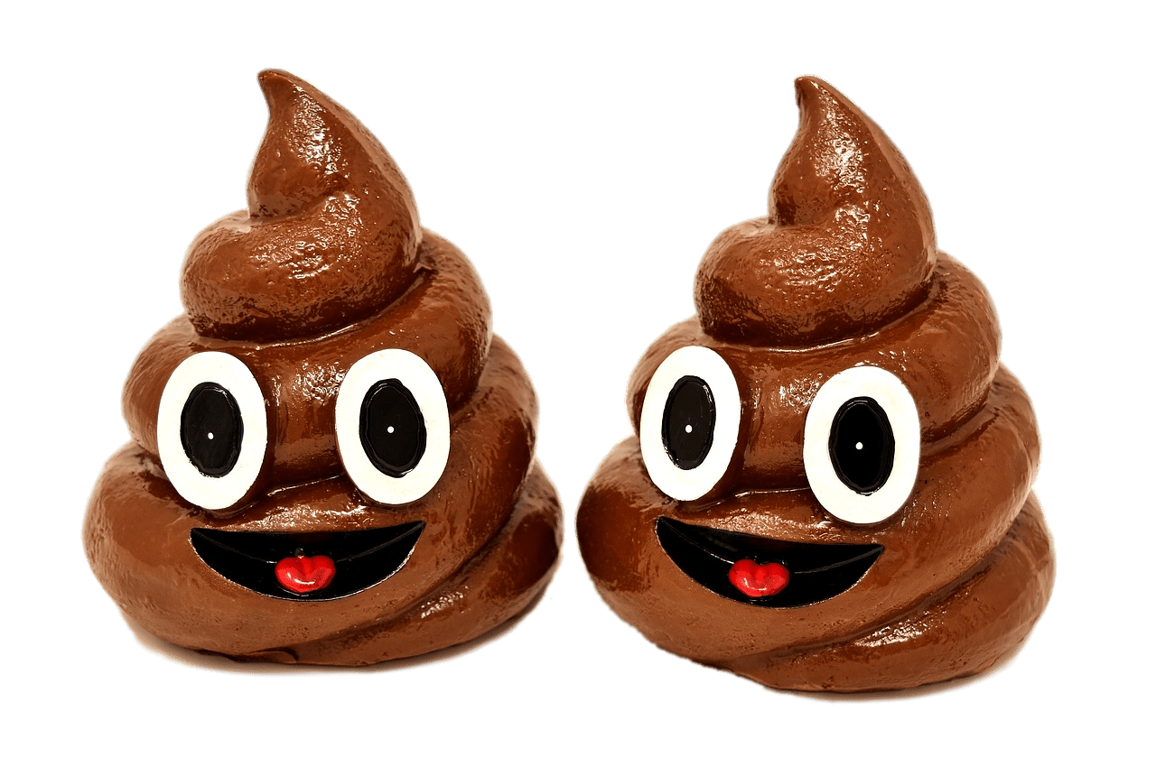 Poop Duo transparent PNG.