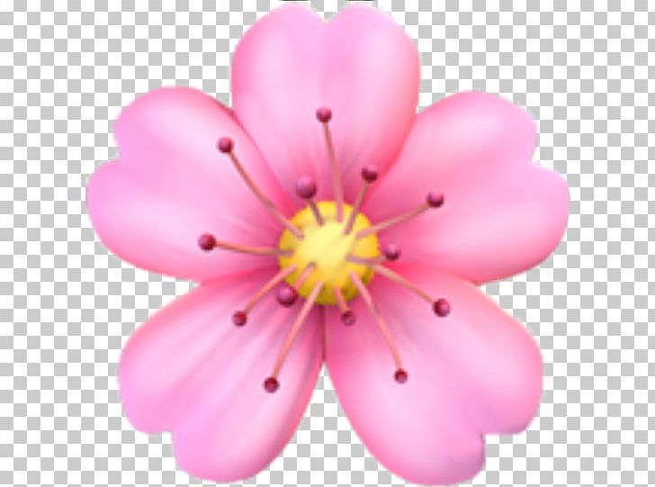 Emojipedia Flower Emoji Domain PNG, Clipart, Apple Color Emoji.