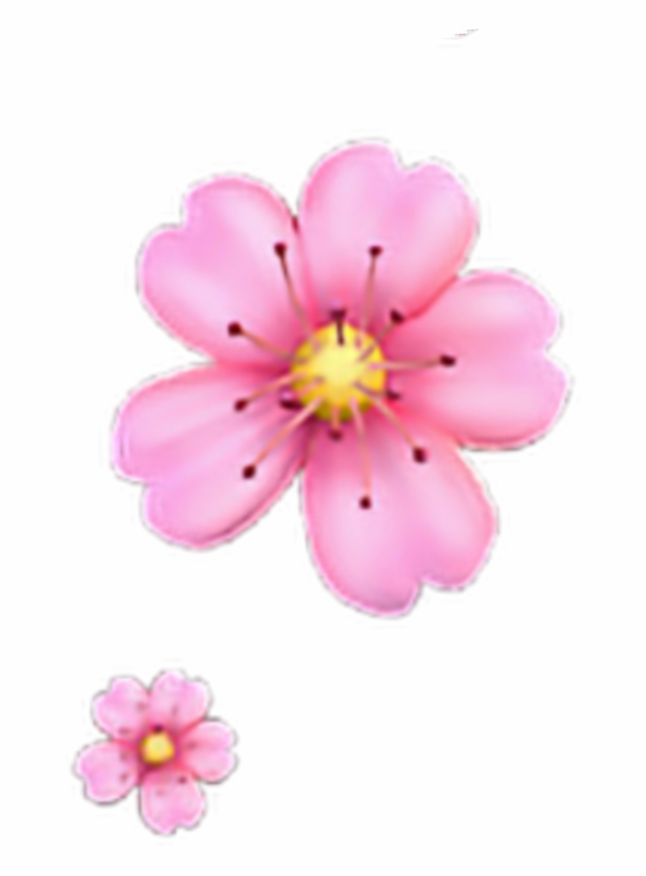 Freetoedit Floweremoji Flower Emoji Iphone Iphoneemoji.