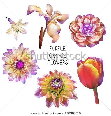 Purple Emperor Stock Photos, Royalty.