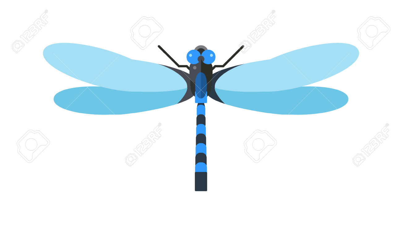 Cartoon Dragonfly And Flat Blue Dragonfly. Summer Dragonfly.