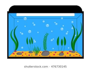 Empty aquarium clipart 7 » Clipart Station.