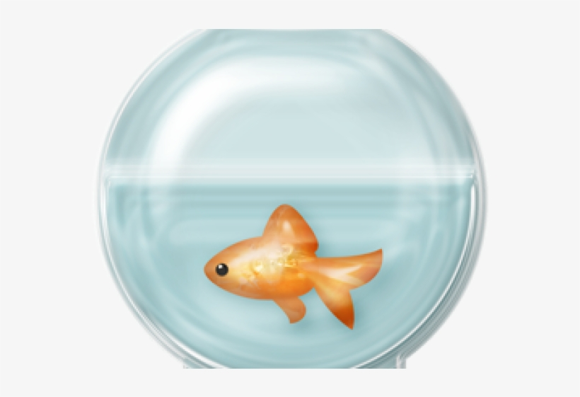 Fish Bowl Clipart Empty Fish Tank.