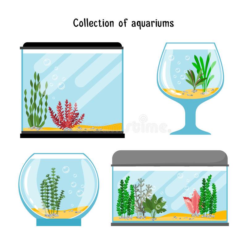 Aquarium Empty Stock Illustrations.