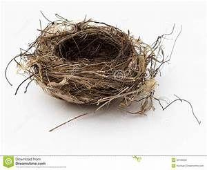 Empty Bird Nest Clipart.