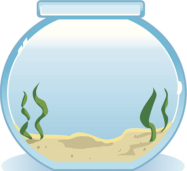 Empty Fish Tank Clipart.