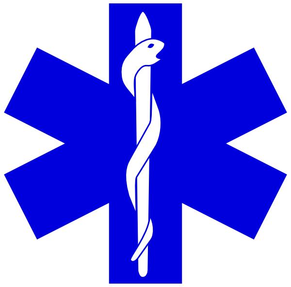 Paramedic Logo.
