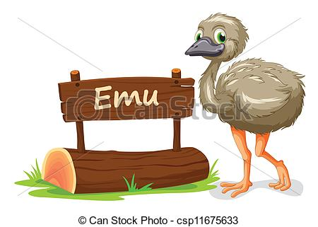 Emu Illustrations and Clip Art. 554 Emu royalty free illustrations.