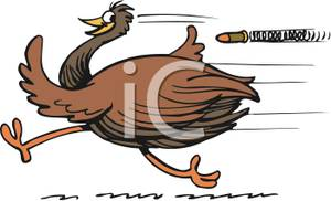 Cartoon emu clipart.