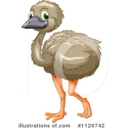 Clip art emu.