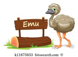 Emu Clip Art Vector Graphics. 444 emu EPS clipart vector and stock.