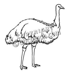 emu clipart #29.