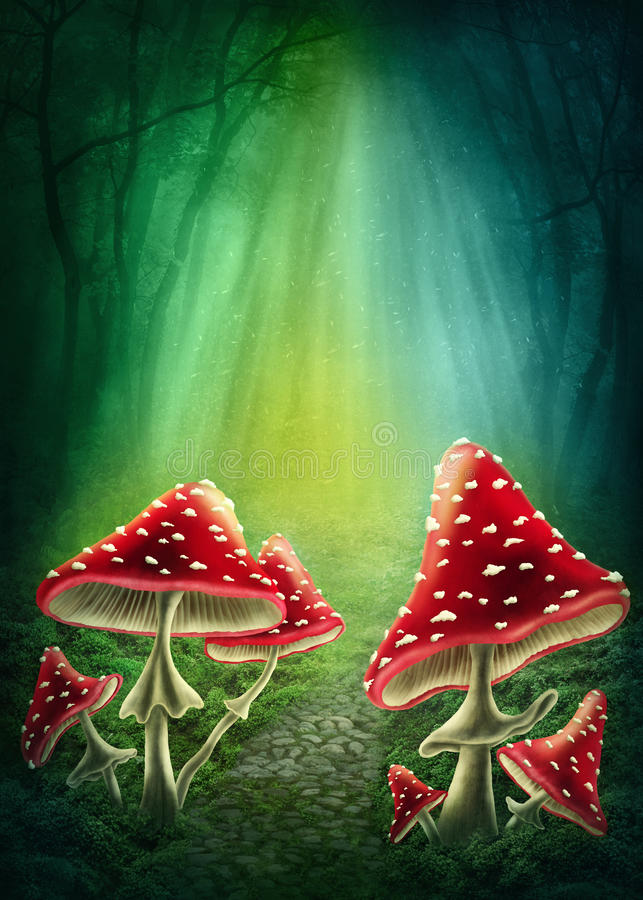 Enchanted Forest Stock Illustrations.
