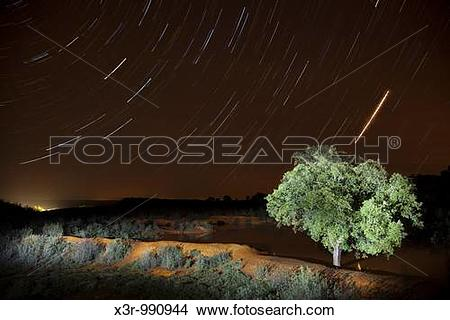 Stock Photo of Encina Startrails a night x3r.
