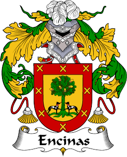The Great Spanish surname of Encinas or Encina..