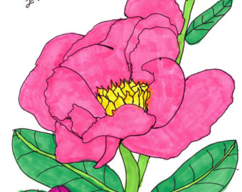 Items similar to Enclosed Peony, 5x7 card of an Original.