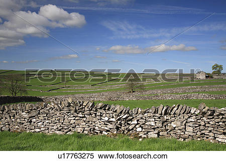 Stock Image of England, Derbyshire, Litton, Field enclosures and.