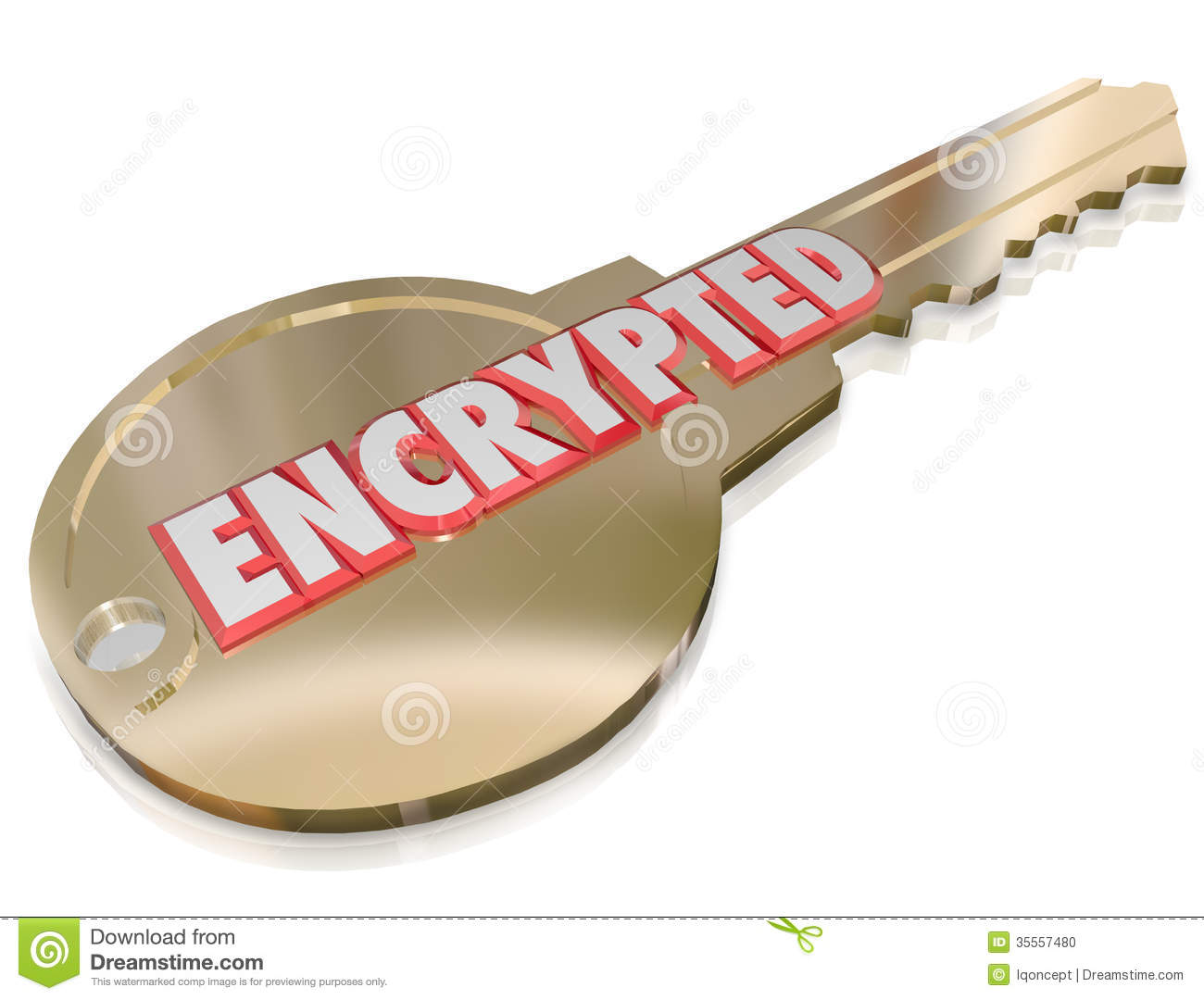 Encrypted Key Computer Cyber Crime Prevention Security Stock Photo.
