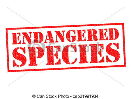 Endangered species Stock Illustrations. 2,107 Endangered species.