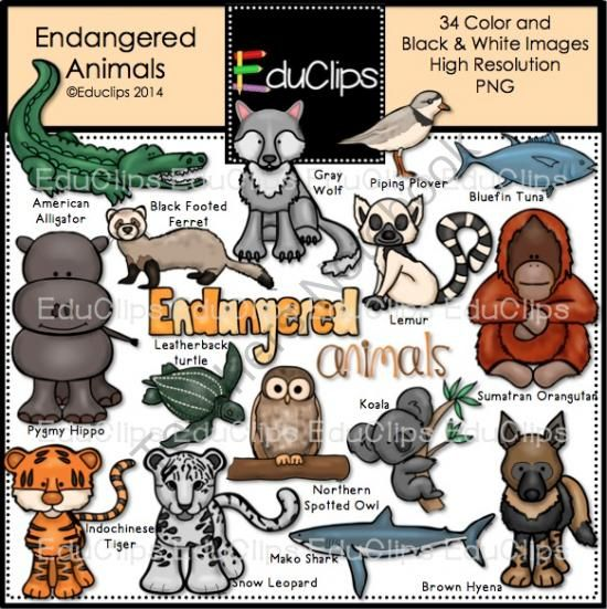 Endangered Animals Clip Art Bundle from Educlips on.