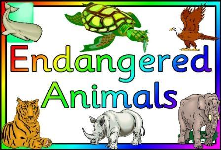 Endangered Animal Clipart.