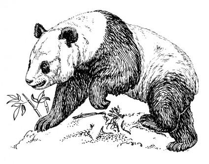 Endangered Species Clip Art Download.