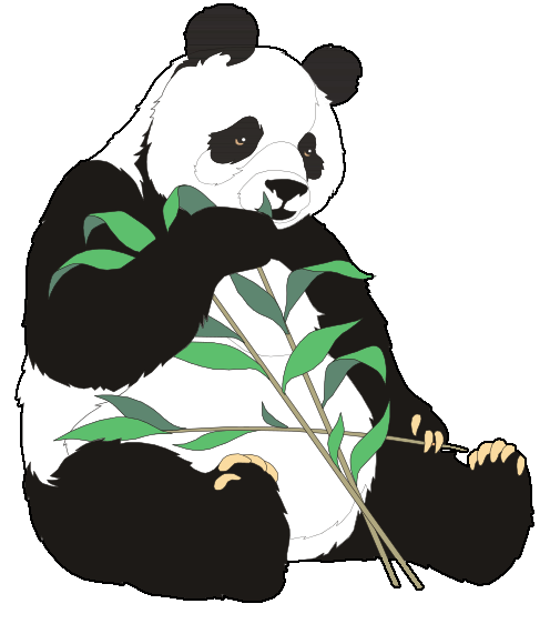 1000+ images about Panda Cuties ♥✳♥ on Pinterest.
