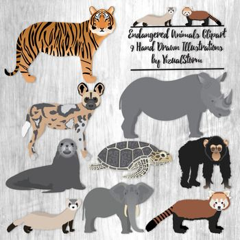 Endangered Animals Clipart.