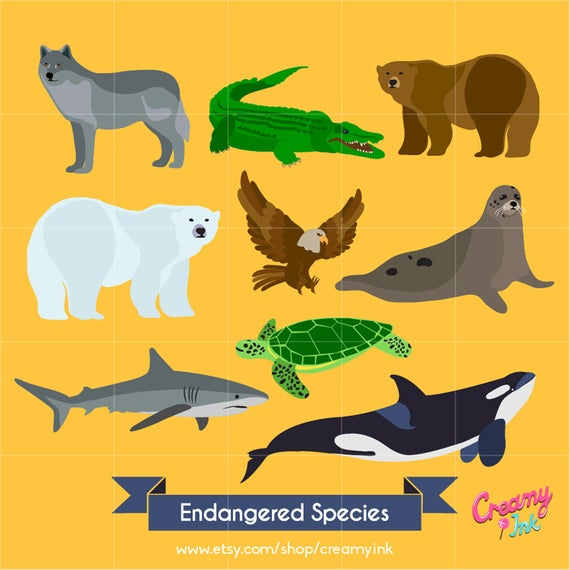 Endangered Animals Digital Vector Clip art / Endangered Species Clipart  Design Illustration / Wolf, alligator, bear, polar, eagle, shark /.