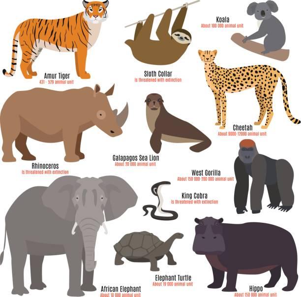 Best Endangered Animals Illustrations, Royalty.