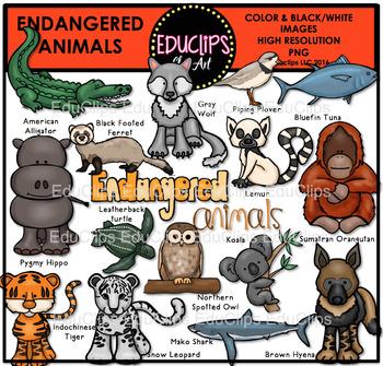 Endangered Animals Clip Art Bundle {Educlips Clipart}.