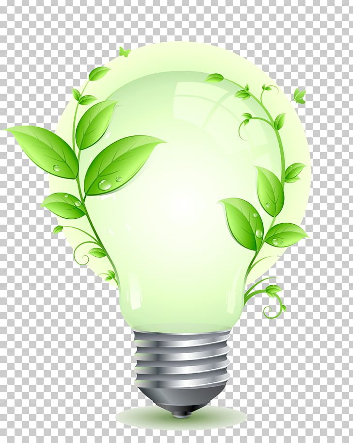 Energy Conservation Efficient Energy Use Incandescent Light.