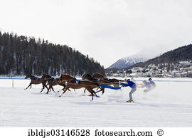 Skijoring Images and Stock Photos. 46 skijoring photography and.